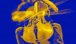 Cello Biennale LIVE