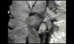 Hidden Trees – 3 korte films